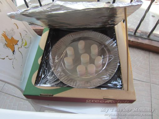 Place the food on an aluminum lined paper plate. (Pizza box solar oven)