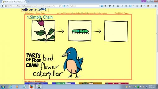 food_chain_game_03