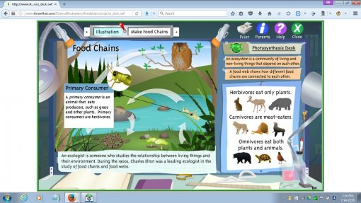 make_food_chains_game_04