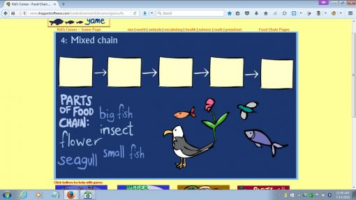 food_chain_game_19